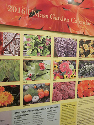 The 2016 UMass Extension Garden Calendar. Photo (c) Hilda M. Morrill