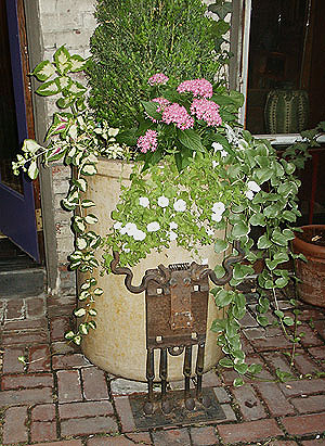 "A container planting accompanied by a unique metal ""cow"" in the 2005 Mayor's Garden Contest. (Photo by Hilda M. Morrill)"